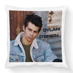 Coussin Dylan O'Brien